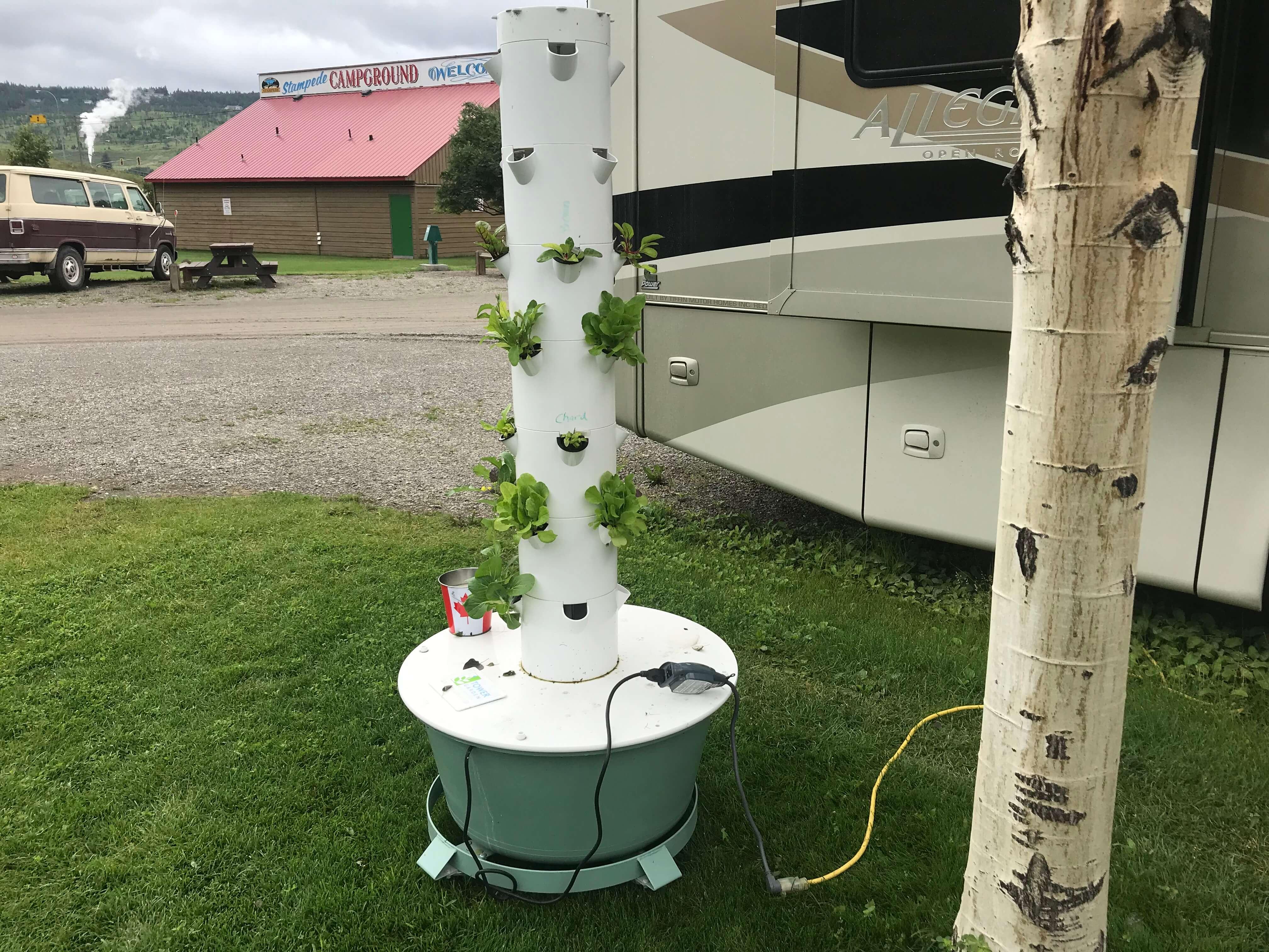 Tower Gardening in the wild